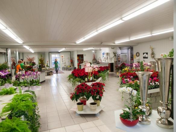 Blumenmönche, Blumenhaus, Valentino Wohnideen